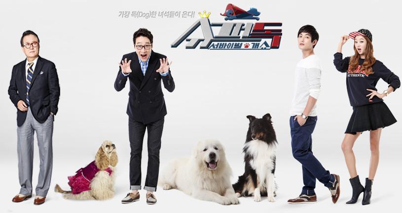 Superdog Korea
