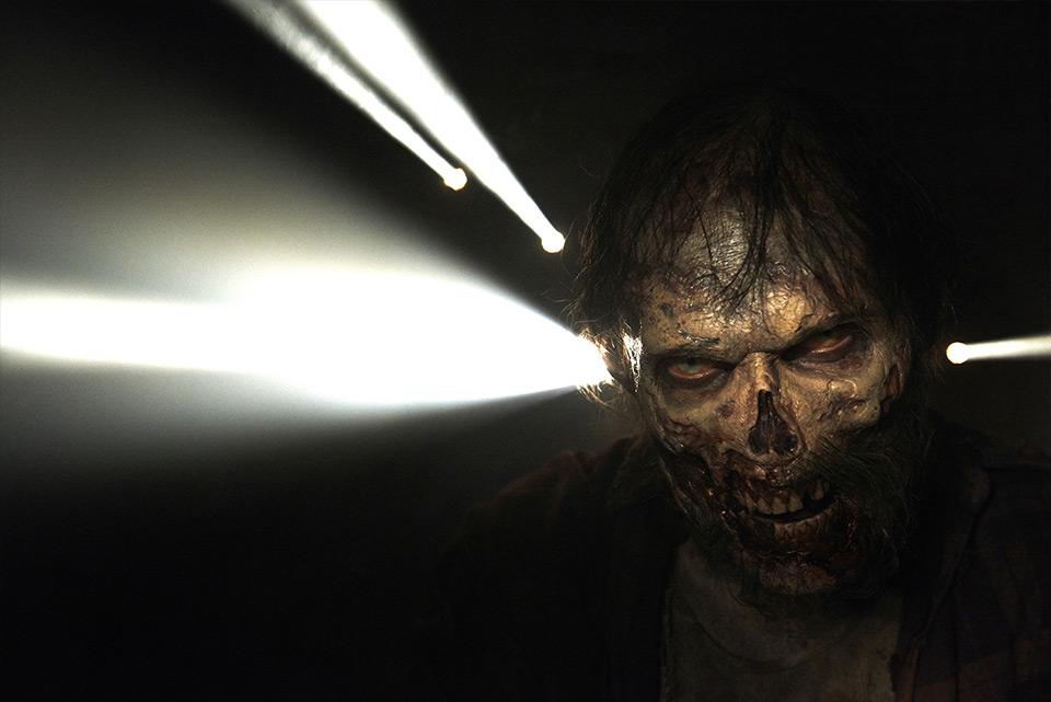 Walkign Dead zombie 2