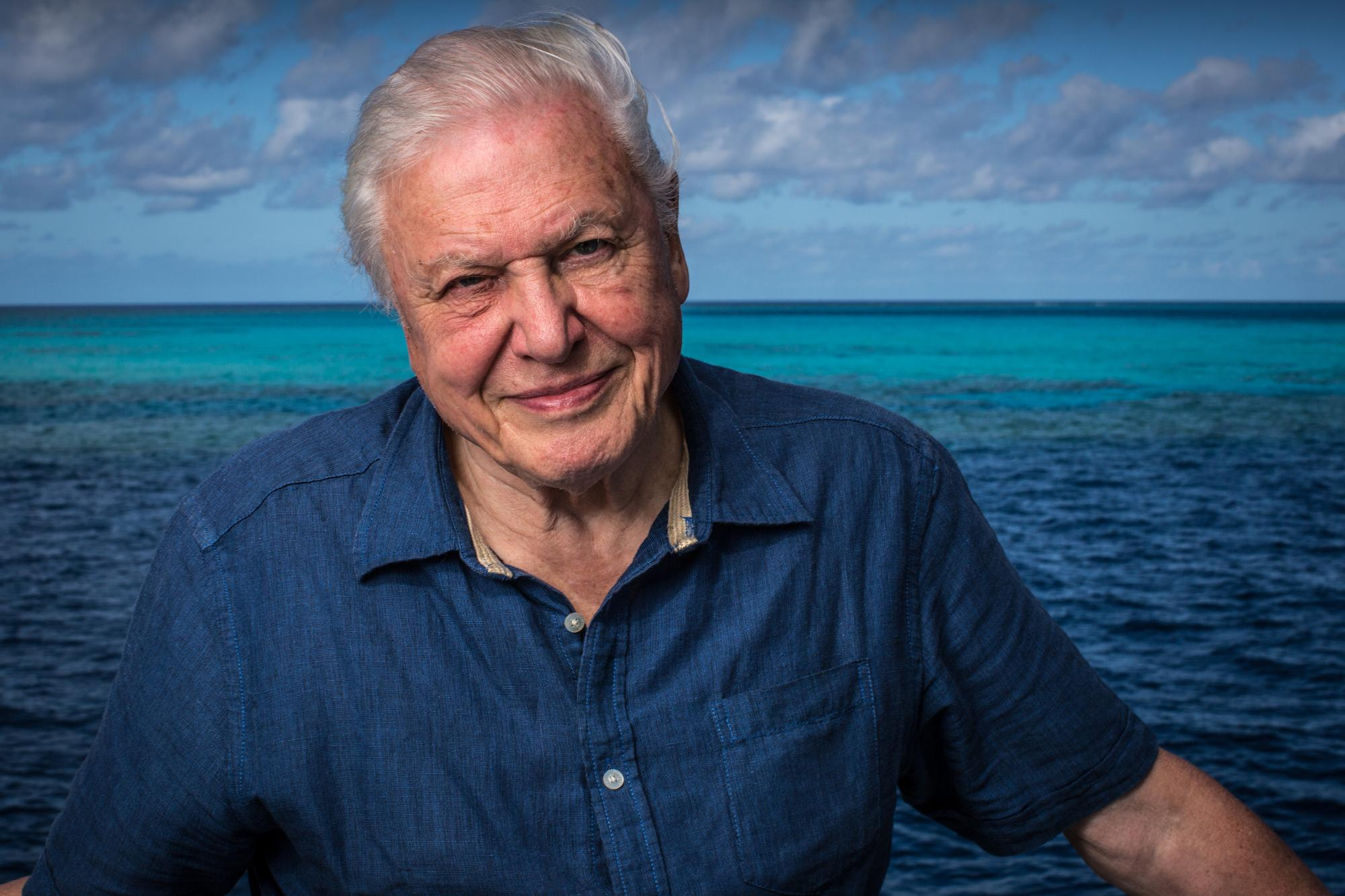 David Attenborough on the Great Barrier Reef 9 (c) Atlantic Productions